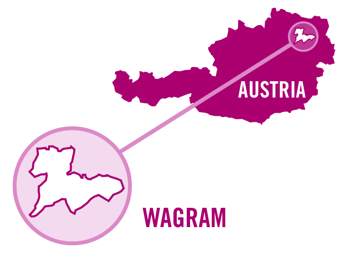 austria wagram rose 0001.png