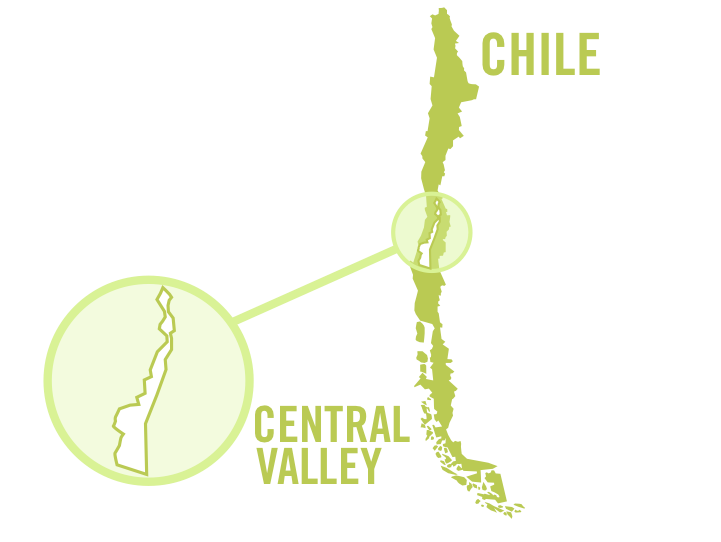 chile central valley white 0001.png