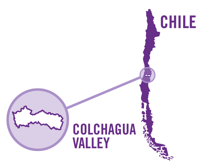 chile colchangua valley red 0001.png