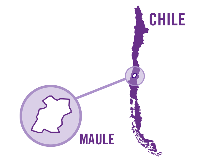 chile maule red 0001.png