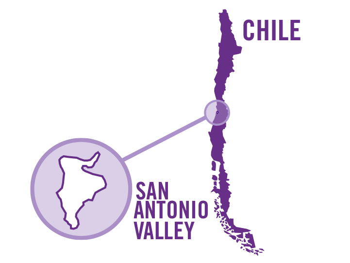 chile san antonio valley red 0001.png