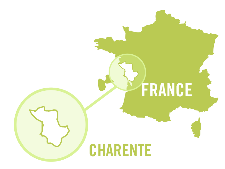 france charente white 0001.png