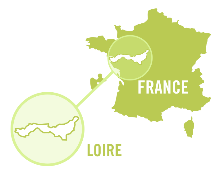 france loire white 0001.png