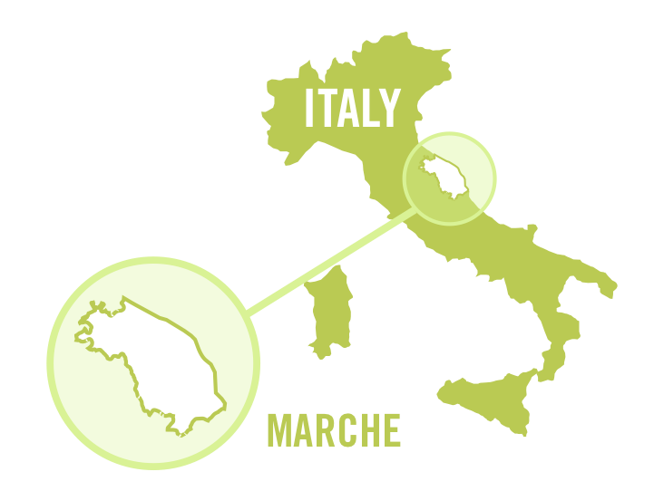 italy marche white 0001.png