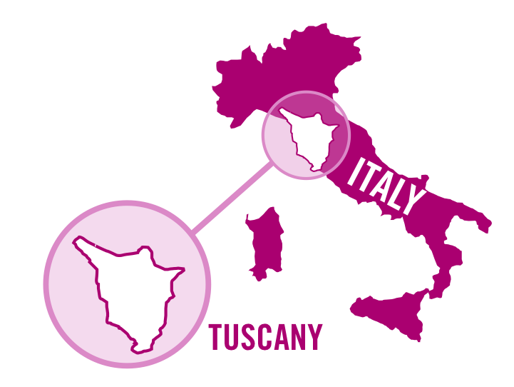 italy tuscany rose 0001.png