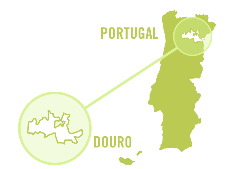 portugal douro white 0001.png