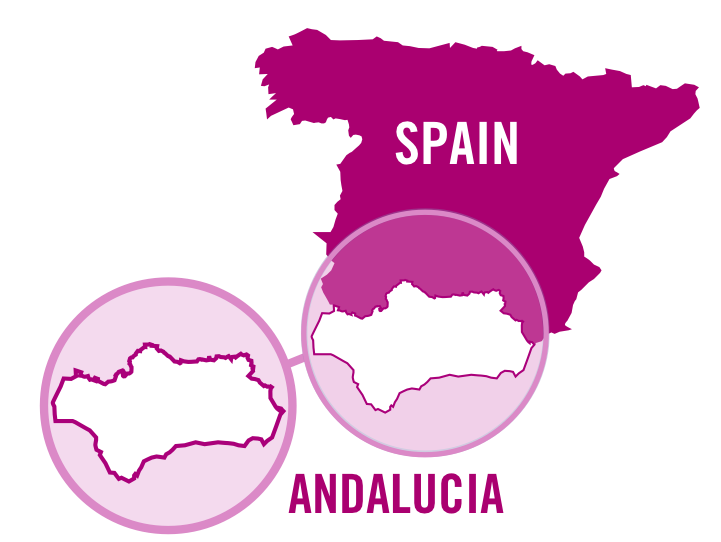 spain andalucia rose 0001.png