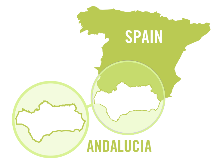 spain andalucia white 0001.png