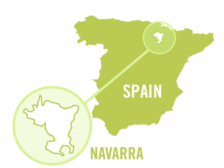 spain navarra white 0001.png