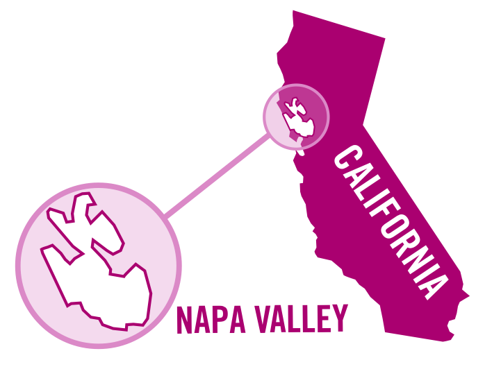 usa california napa valley rose 0001.png