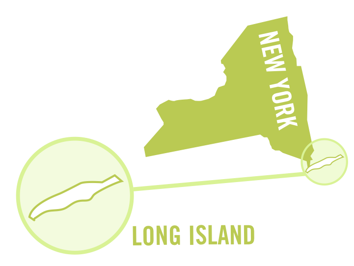 usa new york long island white 0001.png
