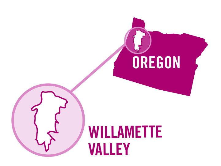 usa oregon willamette valley rose 0001.png